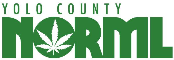 yolo norml logo